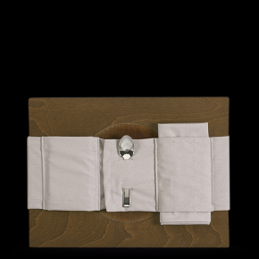 Cloth Napkin and Cover
