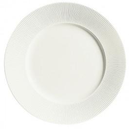 Ginseng Flat plate 17cm